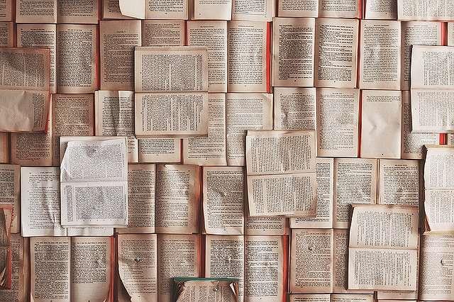 ブログの記事数の役割
