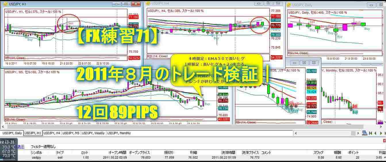 【FX練習71】2011年8月のトレード検証|12回89PIPS