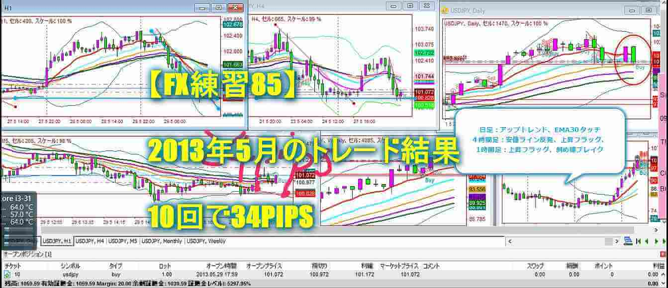 【FX練習85】2013年5月のトレード結果|10回で34PIPS